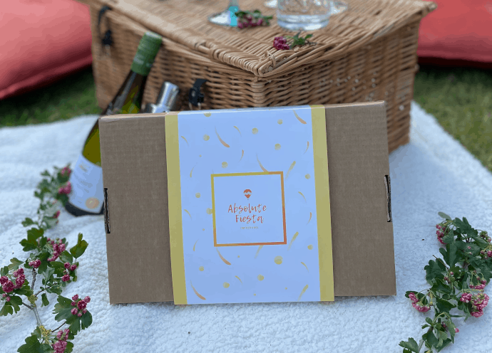 hen party kit in a box in the garden